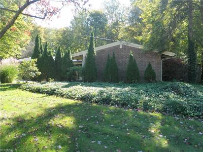 Geauga County Single Family Home For Sale: 700 Bell Rd