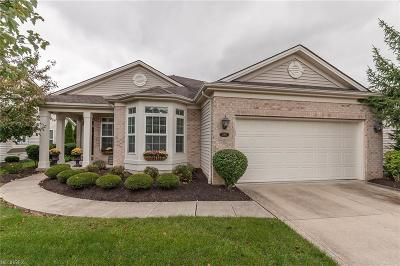 Strongsville Single Family Home For Sale: 11769 Greystone Pt