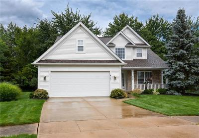 Single Family Home For Sale: 560 Brennans Ct