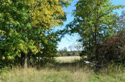 Geauga County Residential Lots & Land For Sale: 8814 Music St