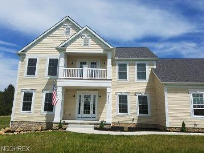 Geauga County Single Family Home For Sale: 18515 Auburn Rd