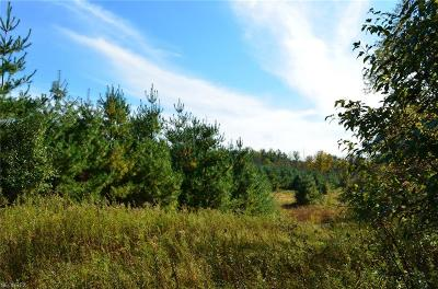 Geauga County Residential Lots & Land For Sale: 9066 Music St