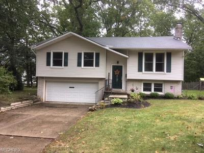 Lake County Single Family Home For Sale: 5291 Hickory Ln