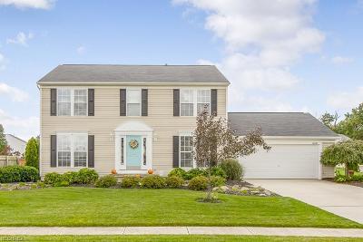 Lorain Single Family Home For Sale: 6080 Doe Crossing