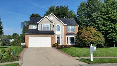 Medina County Single Family Home For Sale: 550 Pebblestone Ct
