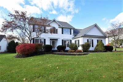 Geauga County Single Family Home For Sale: 18322 Ivy Ln