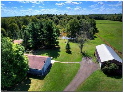 Hinckley OH Farm & Ranch For Sale: $799,900