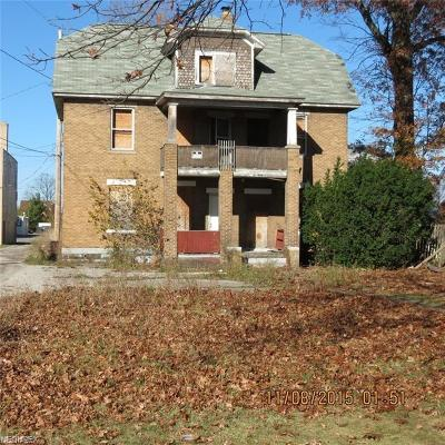 Lorain Single Family Home For Sale: 2213 East 32nd St