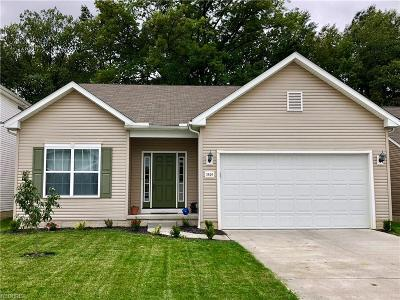 Lorain Single Family Home For Sale: 3820 Parkside Cir West