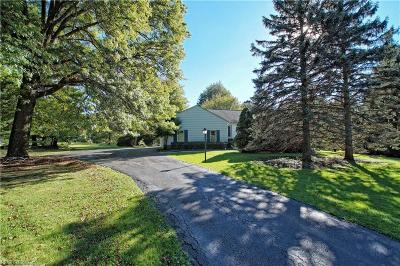 Chagrin Falls Single Family Home For Sale: 28900 Pike Dr