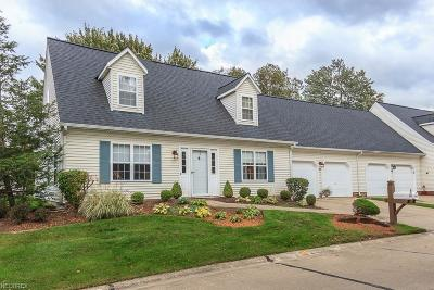 Painesville Township Condo/Townhouse For Sale: 327 Chesapeake Cv