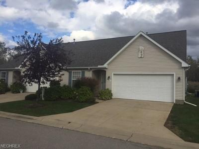 Lake County Condo/Townhouse For Sale: 332 Nautical Way