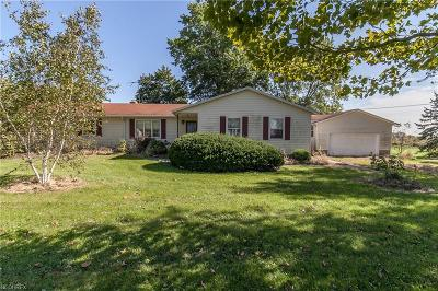 Medina County Single Family Home For Sale: 7929 Wooster Pike Rd