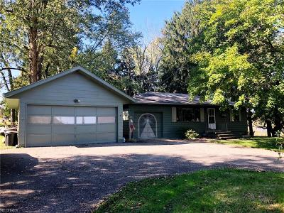 Medina Single Family Home For Sale: 6190 Wadsworth Rd