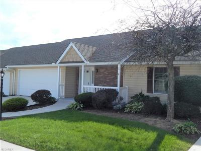 Medina County Single Family Home For Sale: 214 Park Place Dr