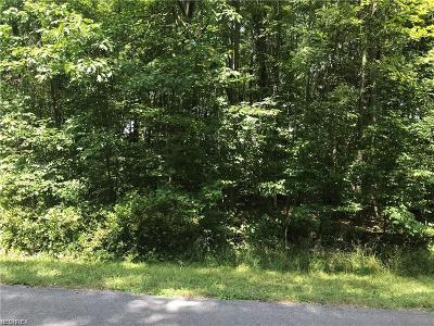 Ashtabula County Residential Lots & Land For Sale: S Park Lane