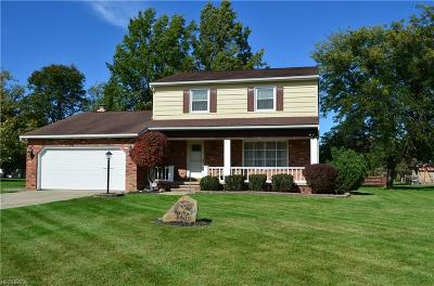 North Royalton Single Family Home For Sale: 3408 Mercury Dr