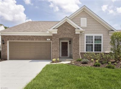 Single Family Home For Sale: 33559 Park Pl