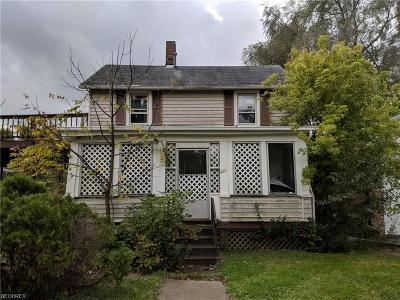 Lorain County Single Family Home For Sale: 213 Sumner St
