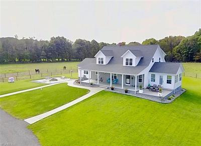 Garrettsville Single Family Home For Sale: 12086 Nelson Parkman Rd
