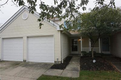 Strongsville Single Family Home For Sale: 20835 Springfield Cir