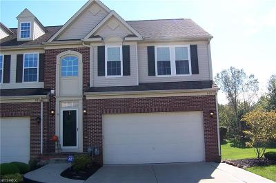 Lake County Condo/Townhouse For Sale: 963 Tradewinds Cv