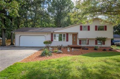 North Ridgeville Single Family Home For Sale: 33821 Mills Rd