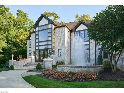 Broadview Heights Single Family Home For Sale: 8871 Spring Valley Dr
