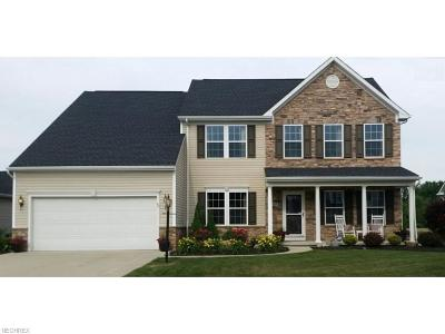 Avon Single Family Home For Sale: 2465 Berkshire Ave