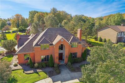 Broadview Heights Single Family Home For Sale: 361 Countryside Dr