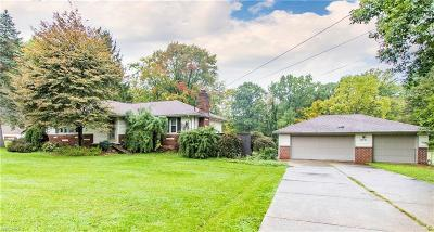 Youngstown Single Family Home For Sale: 874 Bears Den Rd
