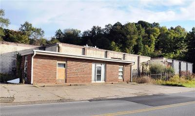 Guernsey County Commercial For Sale: 8667 Georgetown Rd