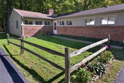Geauga County Single Family Home For Sale: 48 Daisy Ln
