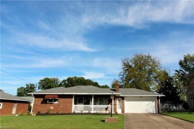 Austintown Single Family Home For Sale: 969 Kirwan Dr