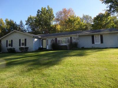 Brecksville Single Family Home For Sale: 9200 Whitewood Rd