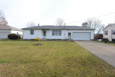 Ashland County Single Family Home For Sale: 532 Snyder Dr