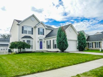 Painesville Single Family Home For Sale: 149 South Settlers Ln