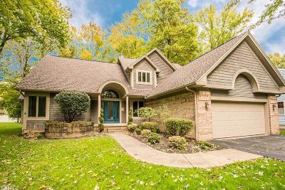 Boardman Single Family Home For Sale: 970 Shields Road