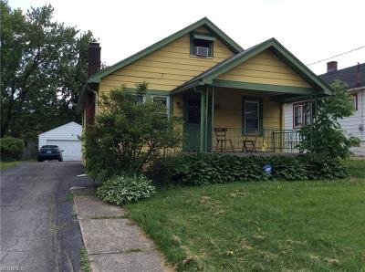Youngstown Single Family Home For Sale: 933 East Dewey Ave