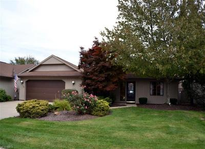 Strongsville Single Family Home For Sale: 10773 Meadow Trl