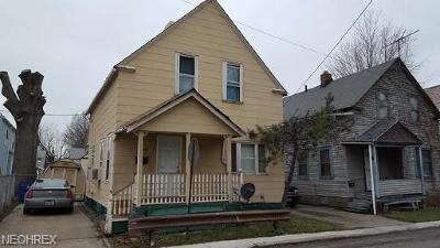 Cleveland Single Family Home For Sale: 2134 West 80th St