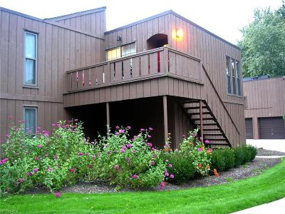 Avon Lake Condo/Townhouse For Sale: 33803 Electric #H-22