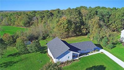 Geauga County Single Family Home For Sale: 9785 Horseshoe Dr