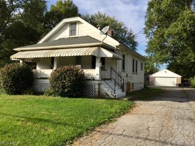 Youngstown Single Family Home For Sale: 238 Laurel St