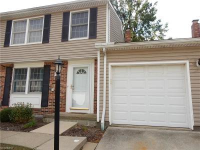 Lake County Condo/Townhouse For Sale: 7388 Willow Run Dr