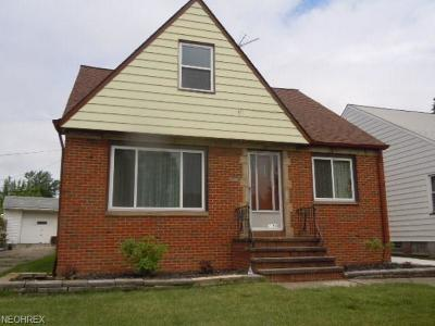 Cleveland Single Family Home For Sale: 2308 Fairdale Ave