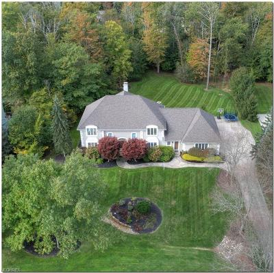 Solon Single Family Home For Sale: 6078 Chagrin Highlands Dr