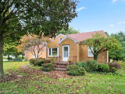Struthers Single Family Home For Sale: 481 Edison St