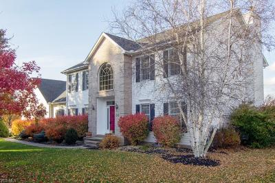 Hudson Single Family Home For Sale: 245 West Hines Hill Rd