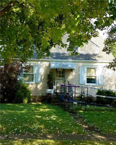 Elyria Single Family Home For Sale: 132 Lafayette St